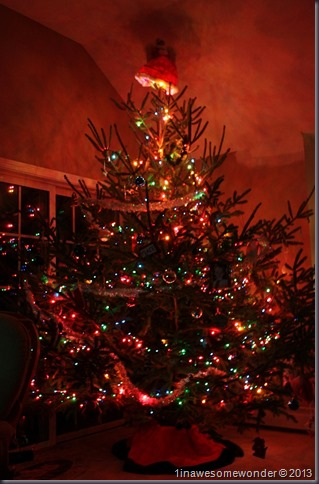 Night falls, the lights on the tree are the only lights powered on in the family room. Okay, it's a huge tree, some 9 1/2 feet tall. It means more room for the kids' presents I guess.