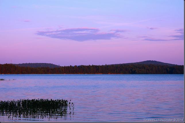 Lavender Lake - Abrams Pond 2014