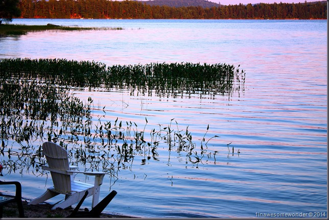 Pull up a seat - Abrams Pond 2014