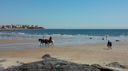 The twins were excited to see people riding horses on the beach