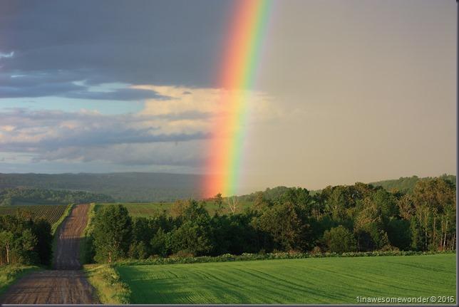 Dryer Road Rainbow