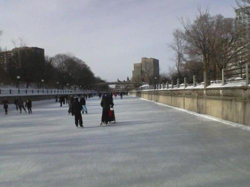 Skating the Rideau Canal 3 years ago today. Wind chills were below zero, but we had to get a skate in before heading back to the US.